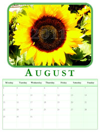 2011 powerpoint calendar August border=